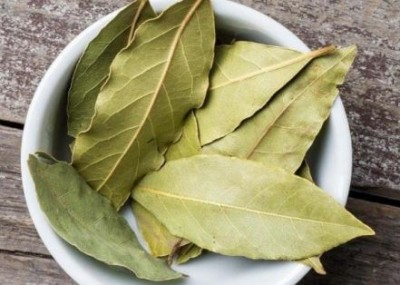 Bay leaf is beneficial for diabetic patients, Know-how?