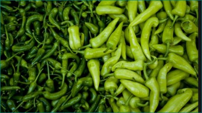 Green chili is very beneficial for health