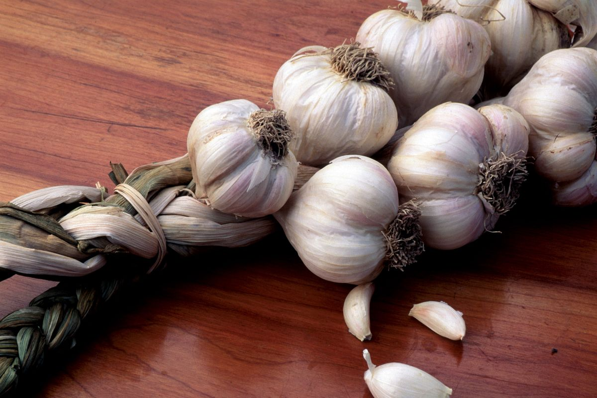 In an empty stomach, garlic intake will deliver various health benefits