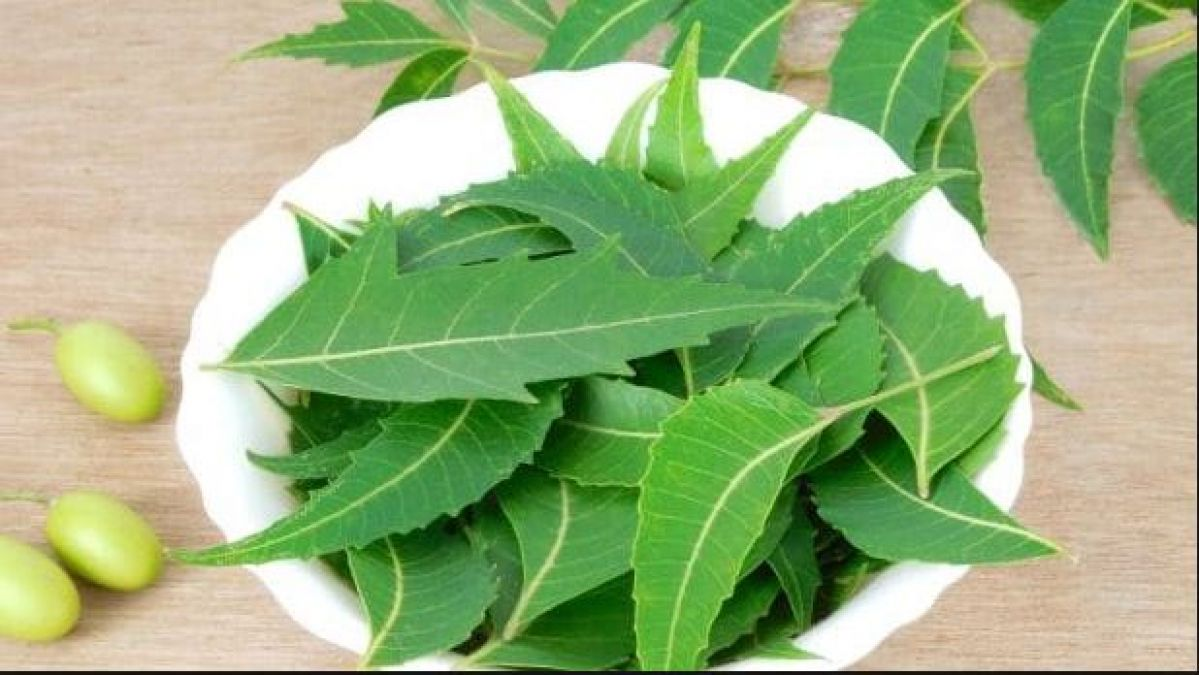 Benefits of eating Neem Leaves Every Morning