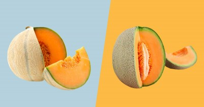 Melon is very beneficial, know its benefits