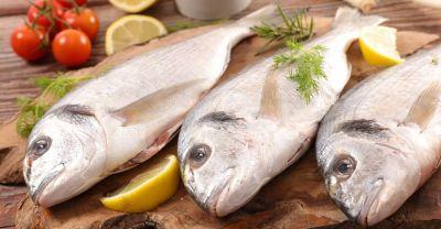 दिल की सेहत के लिए इस तरह करें मछली का सेवन