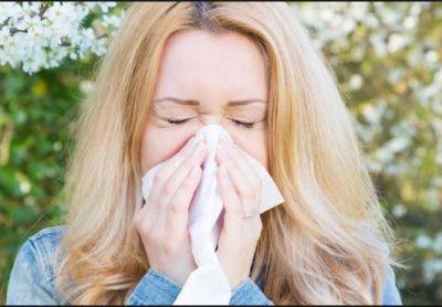 धूल मिट्टी की एलर्जी से बचाएंगी ये चीज़ें