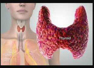These are the symptoms of Thyroid, Know more about it