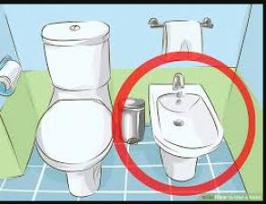 UTI इन्फेक्शन के बचने के लिए पब्लिक टॉयलेट सीट का इस तरह करे इस्तेमाल