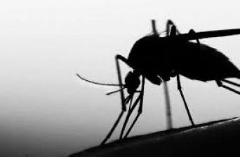 2050 तक विश्व से खत्म हो जाएगा यह जानलेवा बीमारी, पढ़ें रिपोर्ट