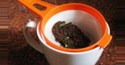 चाय के बाद उसकी बची हुई पत्ती सेहत और सौंदर्य के लिए है लाभकारी
