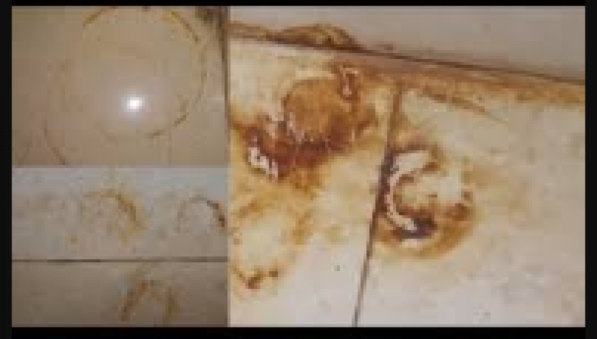 Try this home remedies to remove stubborn stains and get clean home