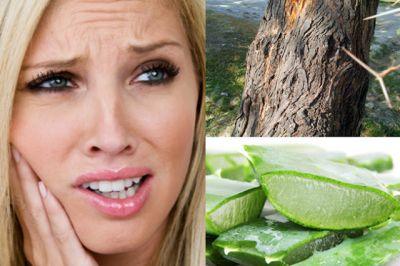क्या आप भी झेल रहे हैं दांत और मसूड़ों का दर्द, काम आएंगे ये नुस्खे
