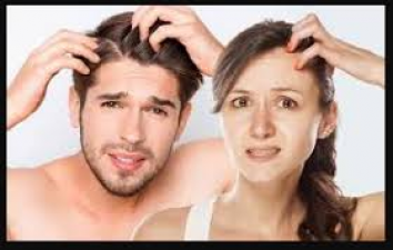 Winter season is the most suitable for hair care, try these home remedies