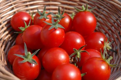 Tomatoes strengthen immunity power, Know benefits