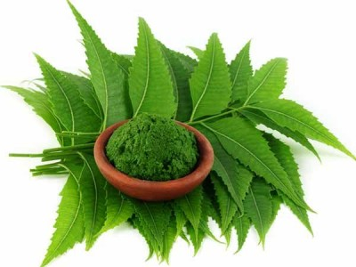 Treat Acne with Neem,know about home remedies