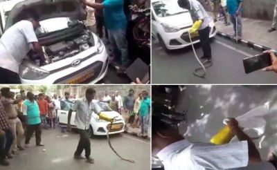 The 8-foot-long snake was sitting while hidden in the car's  engine, People get shocked by seeing this