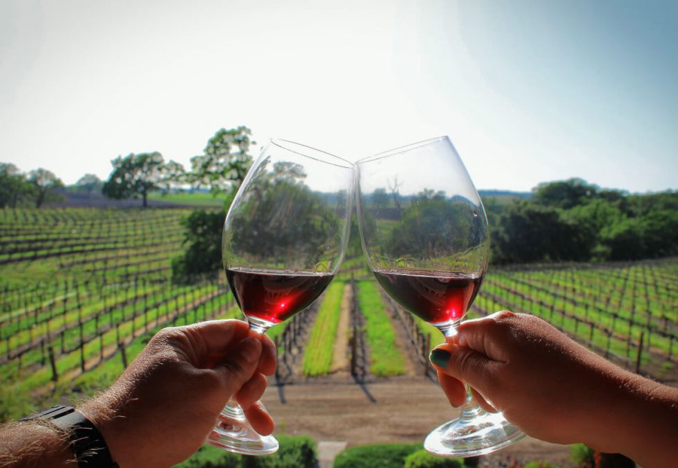 Visit California: The Best Destination for wine