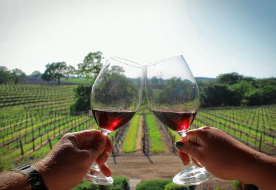 Visit California: The Best Destination for wine lovers