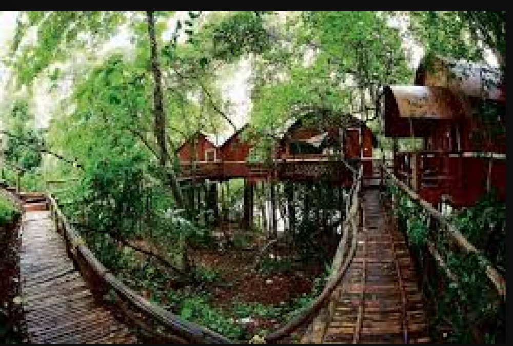 If you are fond of adventure, then this will be the best destination for