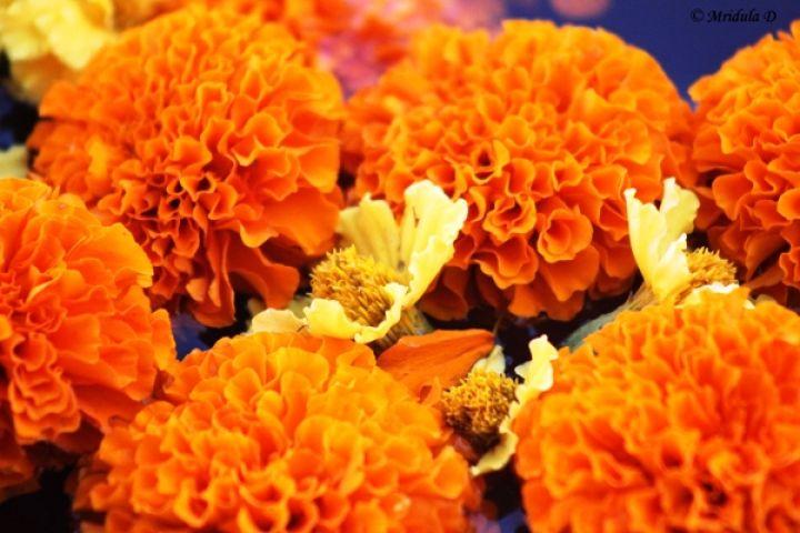 भगवान की उपासना में फूलो का महत्व