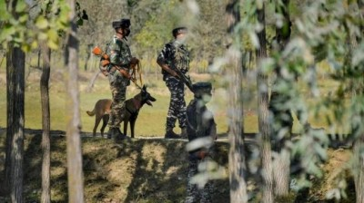 2 terrorists trapped in encounter breaks out in Srinagar's Naugam