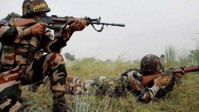 Terrorist killed in encounter in Jammu and Kashmir's Shopian
