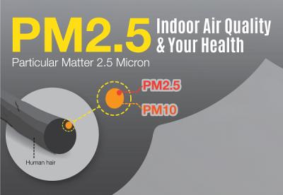 Diwali 2020: PM 2.5 level increases 144 pc
