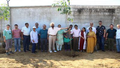 Bhartiya Skill Development University plants over 300 trees in memory of founder Dr. Rajendra Kumar Joshi