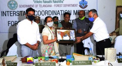 Three estates came together to save the forest and forest tiger