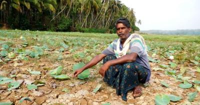 Kerala: Farmer groups to approach SC regarding the Farm Bills