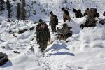 सियाचिन में हिमस्खलन में दबे 9 जवानों के शव बरामद