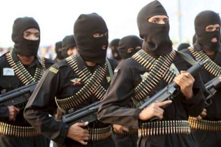 कैमरून सेना कोे मिली बढ़ी कामयाबी, आतंकवादियों को किया ढेेर