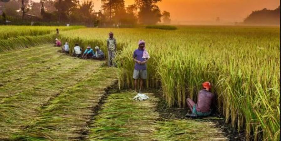 किसानों की मांग पर विचार करने के लिए सरकार को अब आगे आना होगा: कानून मंत्री