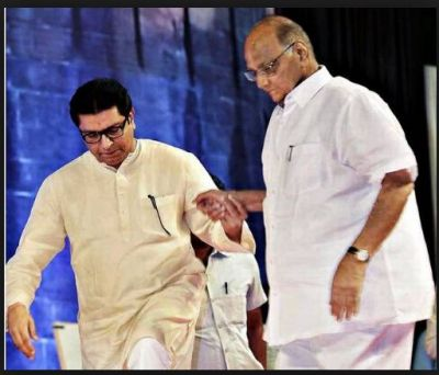 Nationalist Congress Party is likely to taking MNS Raj Thackeray onboard