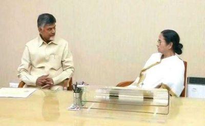 'Mamata Banerjee will play a key role in forming new government': Chandrababu Naidu
