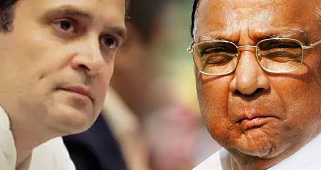Rahul Gandhi meets Sharad Pawar, sparks merger buzz