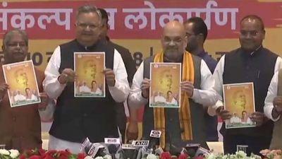 BJP releases manifesto in Chhattisgarh, vows to make Naxal-free state
