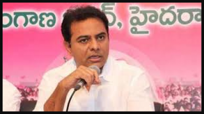 Trs will take the registration of graduates for the upcoming elections