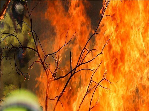 तोचिगी प्रांत के पहाड़ क्षेत्र पर लगी भीषण आग का जारी है प्रसार