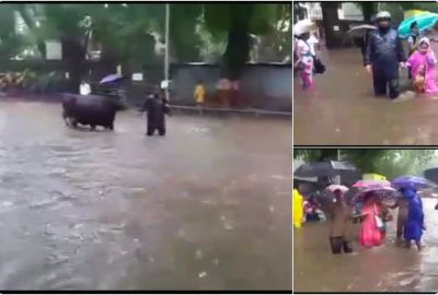 Mumbai rain claims 35 lives while  36 injured schools and colleges remain shut in 2nd day