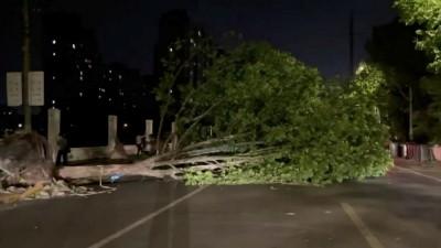 Natural Calamity: Intense weather kills 11, injures 102 in eastern China
