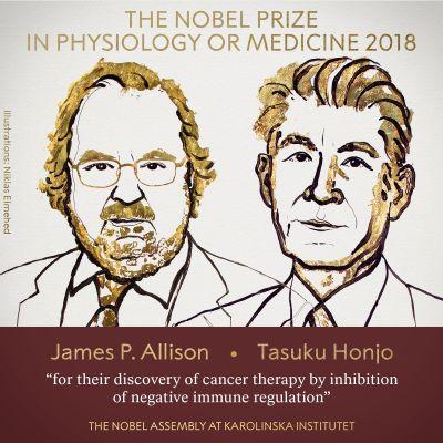 2018 Nobel prize for medicine  goes to cancer researchers -James P. Allison and Tasuku Honjo