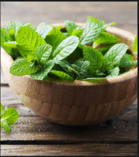 Homemade Beauty Remedies Using Mint to get cooling effects