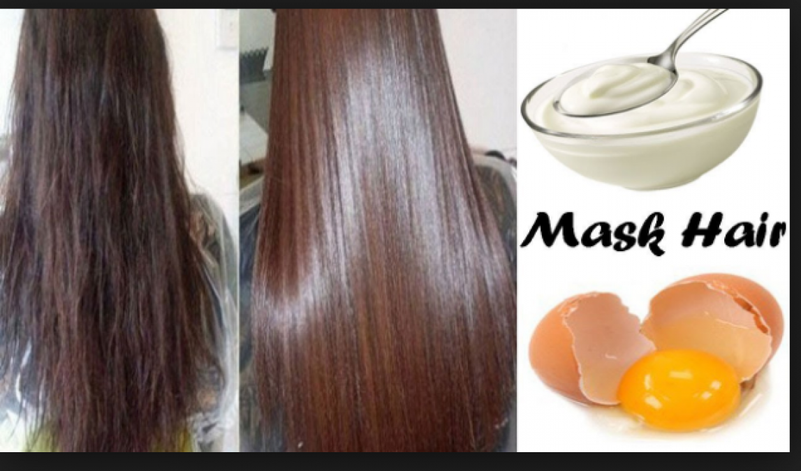 Apply these Egg mask to get healthy and straight hairs | News Track Live,  NewsTrack English 1