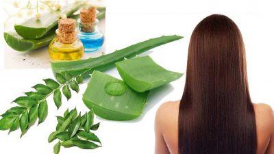 Ayurvedic remedies to get rid of Dandruff