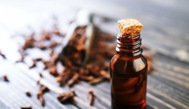 लौंग के तेल से मिलते है कई फायदे