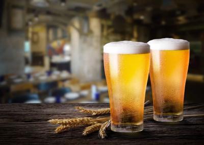 10 scientific reasons why drinking beer is good