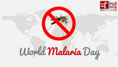 World Malaria Day 2019: types and homemade treatment