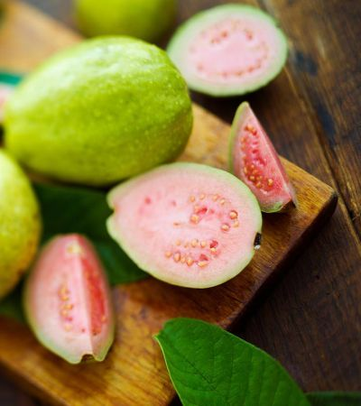 Use of guava is beneficial for malaria patients