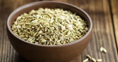 Fennel keeps the stomach healthy