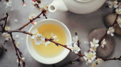 Winter beverages 2020: White tea and it's types to try