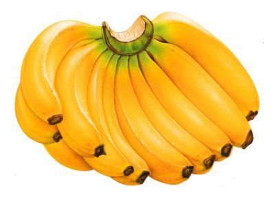 Eating Banana can cure you from a long-term cough and cold