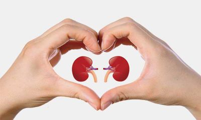 Amazing tips to can keep your kidney healthy